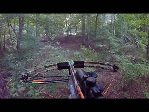 Opening Day For Deer Archery In PA! - YouTube