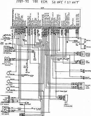 Camaro Tbi Wiring Wiring Diagram Corsa Corsa Pasticceriagele It