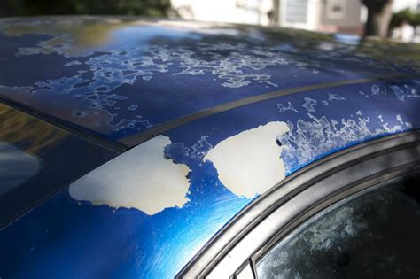 2005 Honda Civic Paint Is Chipping & Peeling Off