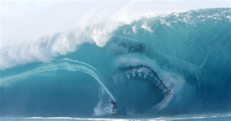 incredible facts  megalodon
