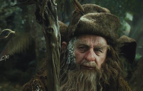 the curious case of radagast the brown a tolkienist 39 s