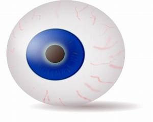 Eyeball Blue Realistic Clip Art at Clker.com - vector clip ...
