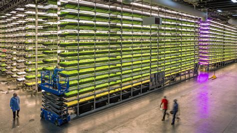 Abu Dhabi ลงทุน 100 ล้านดอลล่าร์ พัฒนาเทคโนโลยี 'เกษตรกรรม ...