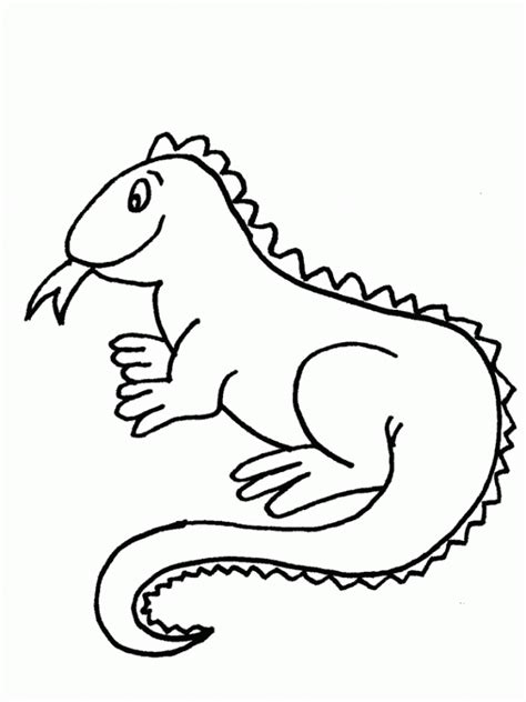 printable iguana coloring pages  kids