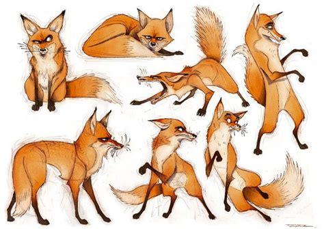 ideas  fox sketch  pinterest fox tattoos