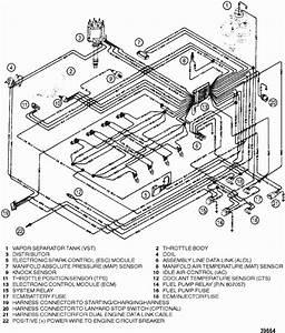 Mercruiser 502 Efi  Gen  V  Gm 502 V