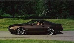 Goldcamaro1984 1984 Chevrolet Camaro Specs  Photos  Modification Info At Cardomain