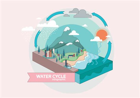 water cycle infographic vol  vector