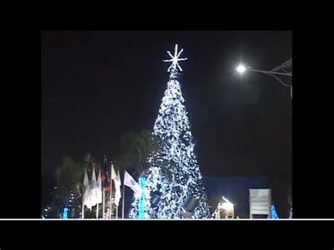 siege social la croissanterie illumination d 39 un arbre de noël géant au siège social