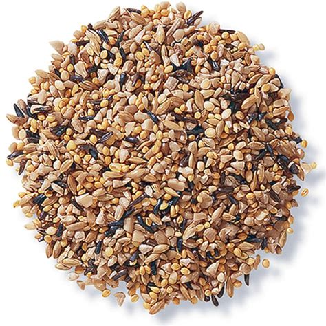 duncraft com duncraft 8405 fancy finch mix bird seed
