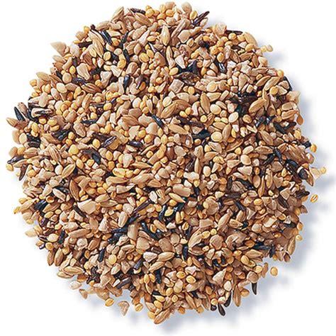 duncraft com duncraft 8405 fancy finch mix bird seed
