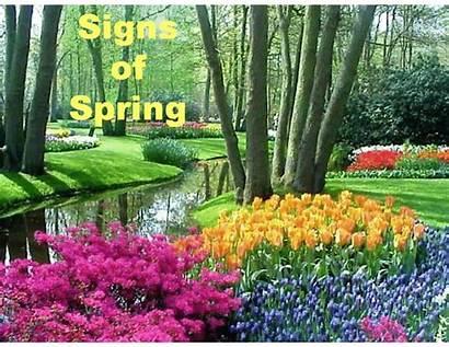 Spring Season Powerpoint Presentation Signs Children Equinox