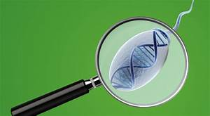 Is Sperm Dna Fragmentation Really Important In Male Infertility