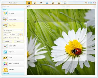 Free Form Crop Image Online by Photo Crop Editor Photo Editor Free Download For Windows 7