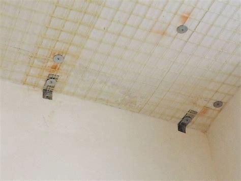 istituto comprensivo pavia di udine cosenza fibrenet