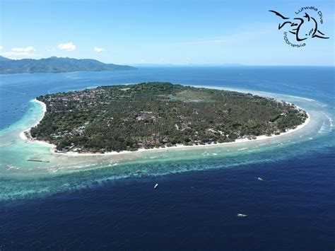trawangan dive resort successful dive resort on popular tropical island of gili