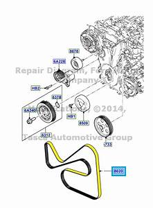 New Oem Engine Drive Belt 2011