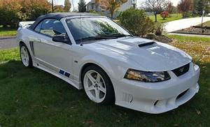 saleen s281sc convertible F | Ford mustang saleen, Used mustangs for sale, Ford mustang