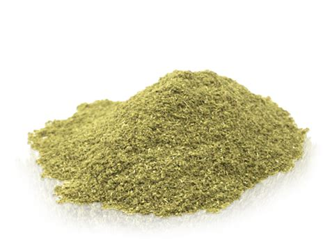 file powder bulk ground sassafras leaf file powder marx pantry