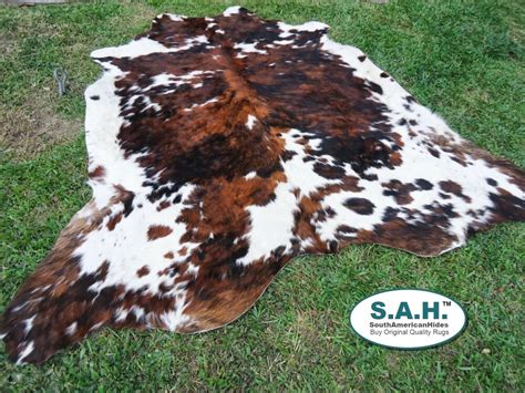 Cowhide Rugs Ebay by New Large Cowhide Rug Tricolor Cowskin Cow Hide Leather