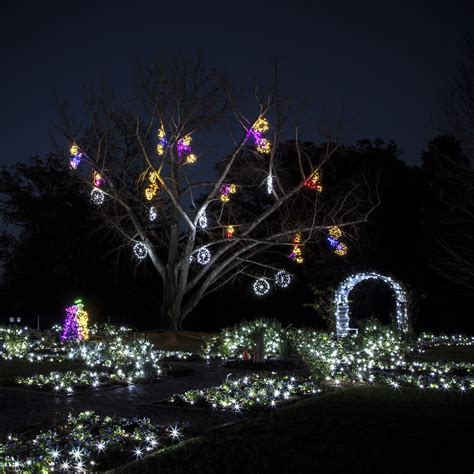 lewis ginter festival of lights gardenfest 2014 a legacy in lights