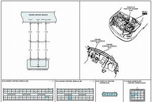 Where Can I A Diagram For The Tps For 2004 Kia Rio  I Get Obd Ii Code P0172 And P0121
