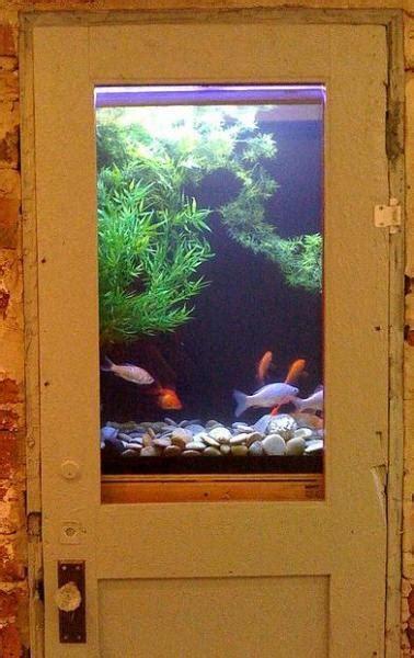 unusual built  aquariums adding beautiful green ideas