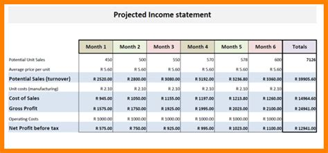 Projected Financial Statements Template by 7 Projected Financial Statement Sle Statement 2017