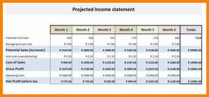 projected financial statements template - 7 projected financial statement sample case statement 2017