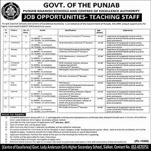 Punjab Daanish Schools & Centres Excellence Authority Jobs ...