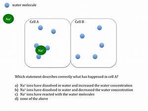 Osmosis Teaching Resources