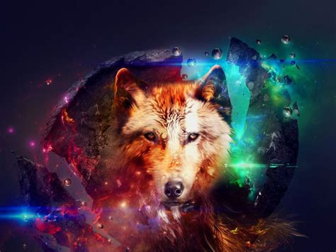 Galaxy Animal Wallpaper - animals wallpaper galaxy space wolf wolf
