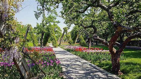 Britzer Garten ‹ Ausflugsziele Auf Visityde