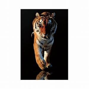 Tableau Verre Photo Tigre En Mouvement 120x80cm Pier Import