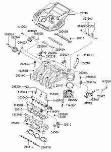 283103c000 - Hyundai Manifold Assembly