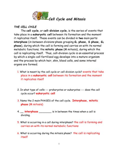 the cell cycle and mitosis worksheet worksheets for all