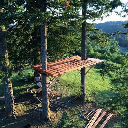 Treehouse Tree Built Cabane Self Perfect Dream