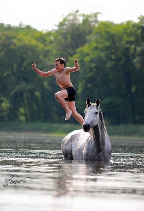 horses horse summer jump fun water jumping board swimming diving boy play cute lake animals playing boys standing childhood he