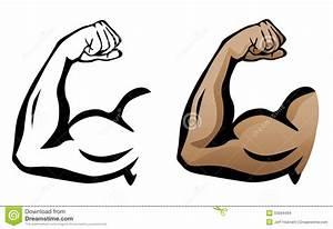 Muscular Arm Flexing Bicep Illustration Stock Vector ...