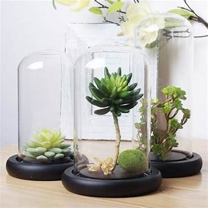 H&J made bell jar glass cover without knob home decoration