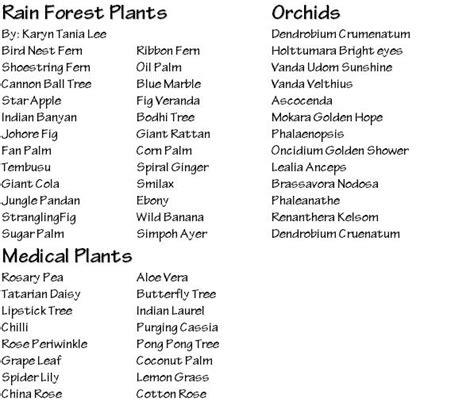 tropical plants list rainforest plants list www pixshark com images galleries with a bite