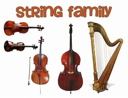 String Instruments Orchestra Instrument Clipart Stringed Brass