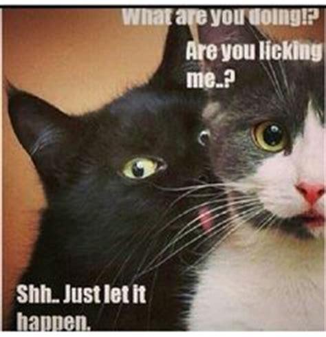 Happy work anniversary memes imgflip. Memes (Relationships) on Pinterest   My Husband, Ecards ...