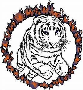 Cartoon Tiger Clipart - Cliparts.co
