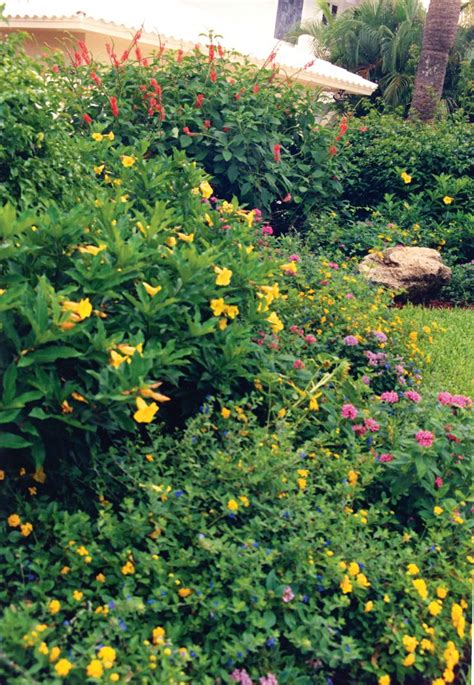 This Boca Raton Landscape Is All About Flowers Long