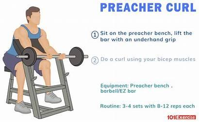 Preacher Curl Curls Alternative Muscles Ez Bar
