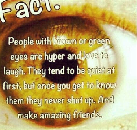 what does my eye color say about me best 25 brown facts ideas on green