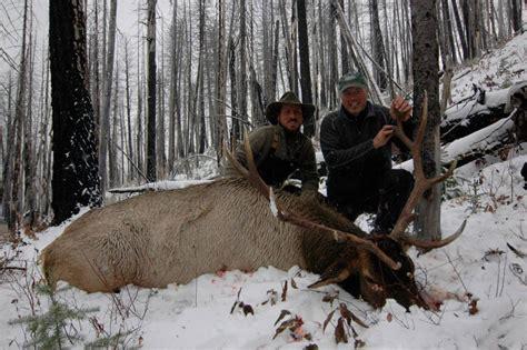 montana elk hunt hunts