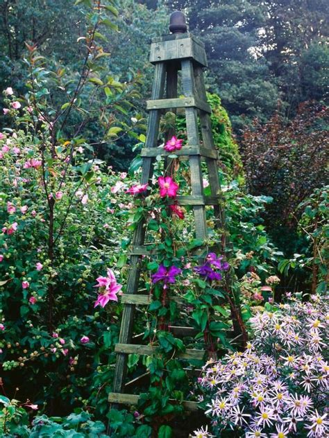 How To Build A Trellis For Climbing Plants Woodworking