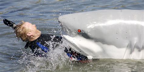 Banana Boat Accident Portugal by Fatal Shark Attack Victims